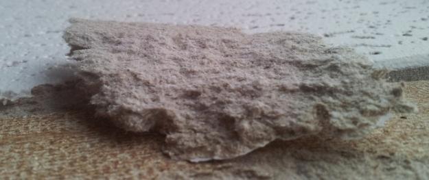asbestos removal brisbane